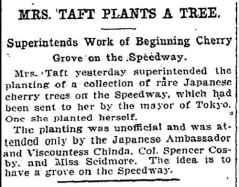 An article noting the tree planting by Mrs. Taft.