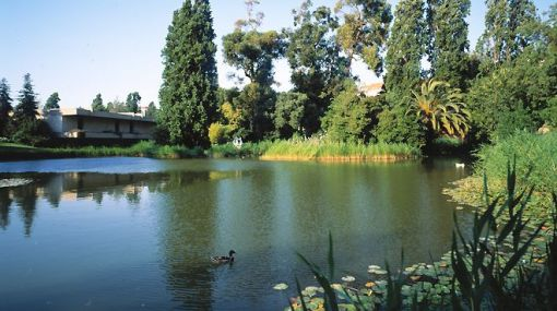 Gardens - Calouste Gulbenkian Museum